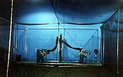 indoor baseball batting cages
